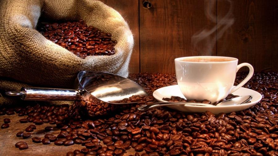 kave edzes